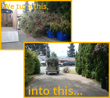 Professional junk removal in Campbell River BC.